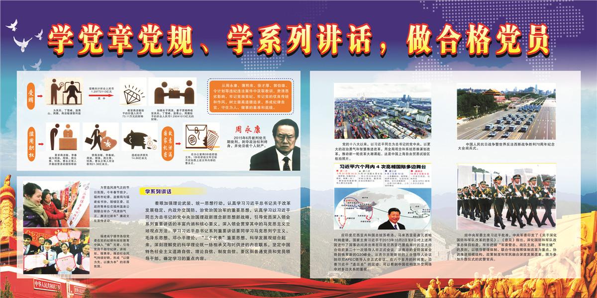 【电子橱窗】学党章党规,学系列讲话,做合格党员
